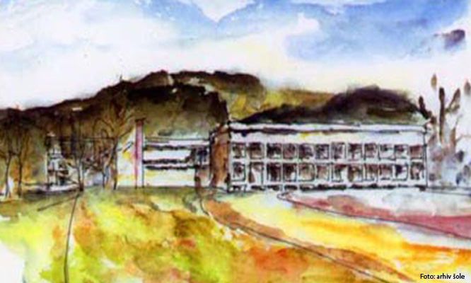 Srednja šola Slovenj Gradec, Višja strokovna šola